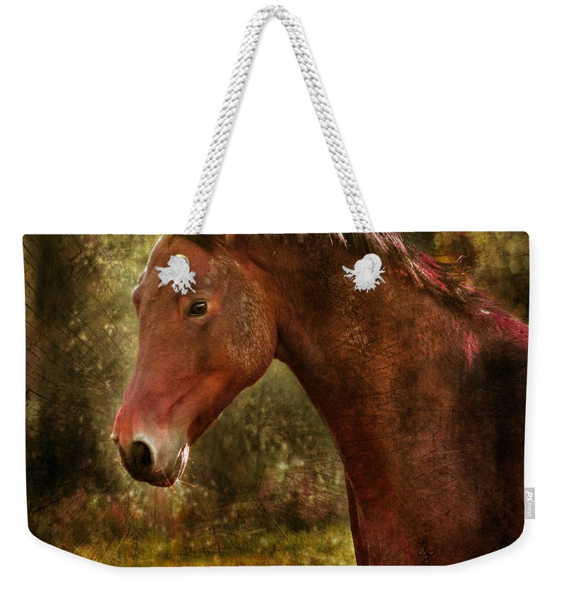 Horse Weekender Tote Bag featuring the photograph The Horse Portrait by Angel Ciesniarska