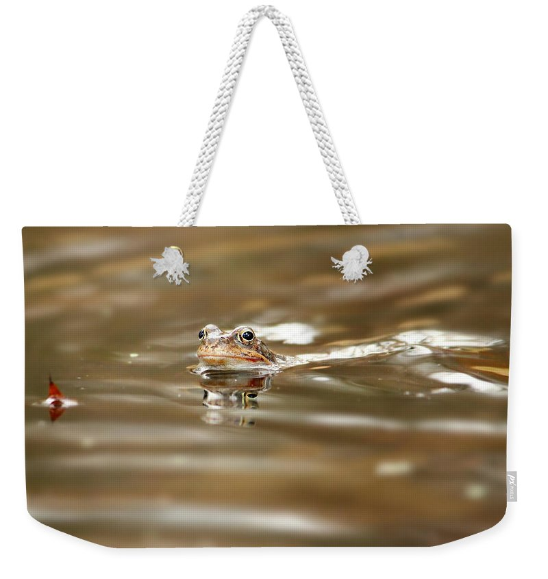 Toad Weekender Tote Bag featuring the photograph Toad by Heike Hultsch
