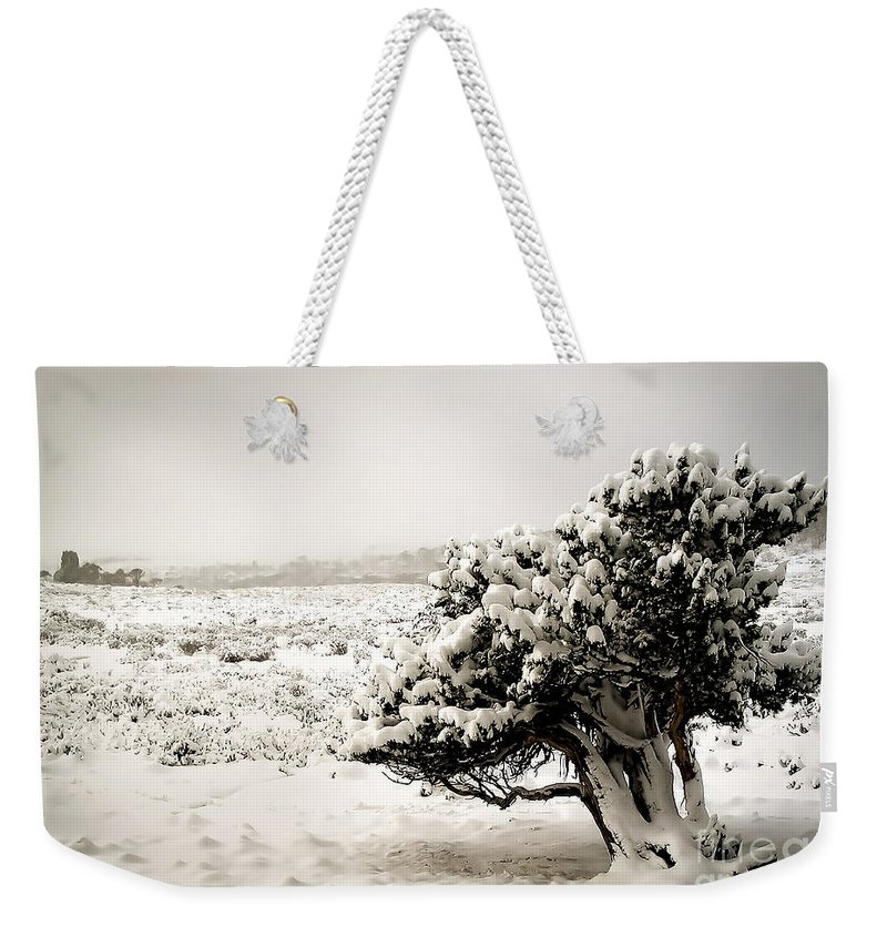 Landscape Weekender Tote Bag featuring the photograph Trees In Snow by Tim Hester