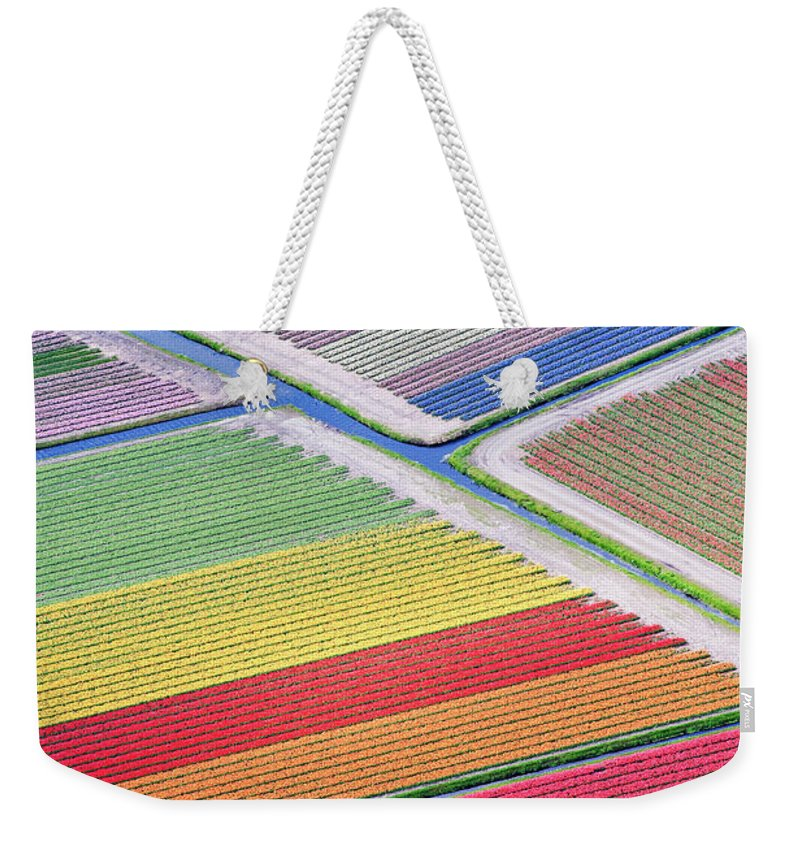 Scenics Weekender Tote Bag featuring the photograph Tulip Fields Between Sassenheim And by Atlantide Phototravel