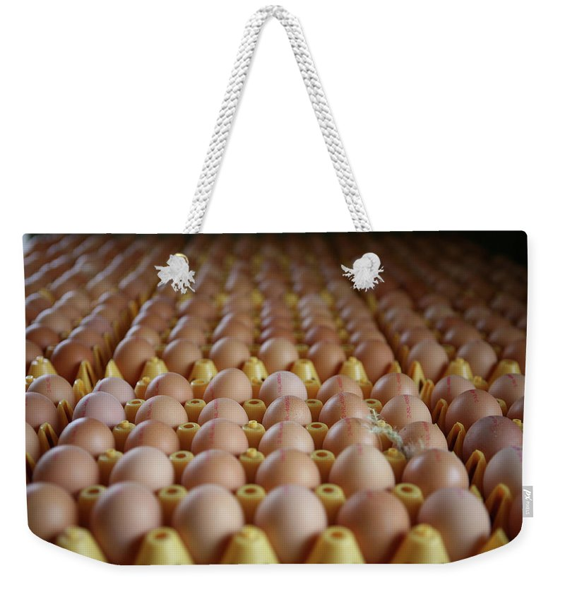 Animal Weekender Tote Bag featuring the photograph Untitled by Ton Koene