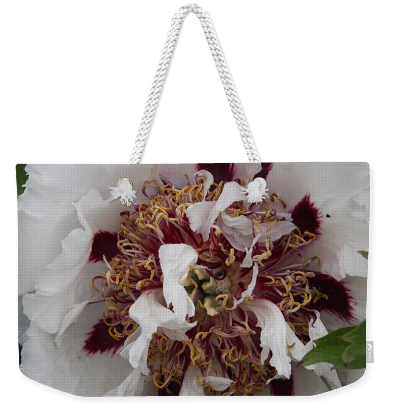 Peonies Weekender Tote Bag featuring the photograph White Peony by Christiane Schulze Art And Photography