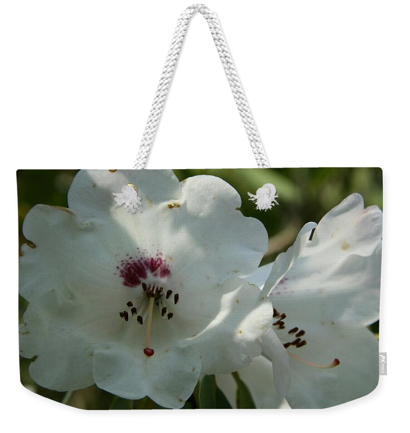 Rhododendron Weekender Tote Bag featuring the photograph White Rhododendron Blossom by Christiane Schulze Art And Photography
