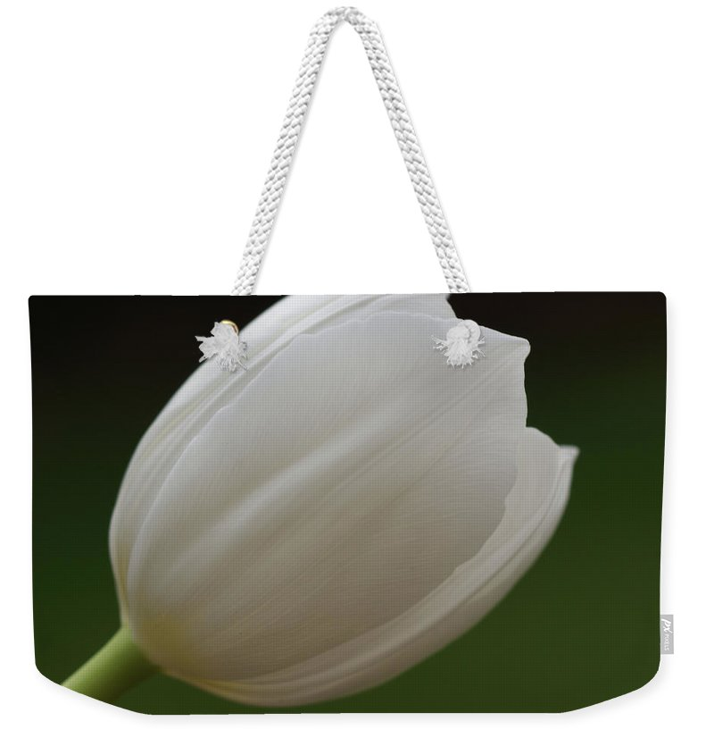 White Weekender Tote Bag featuring the photograph White Tulip 1 by Carol Lynch