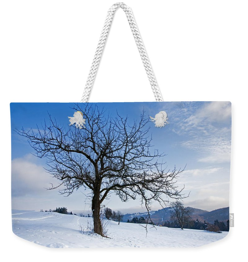 Trees Weekender Tote Bag featuring the photograph Winter Landscapes by Ian Middleton