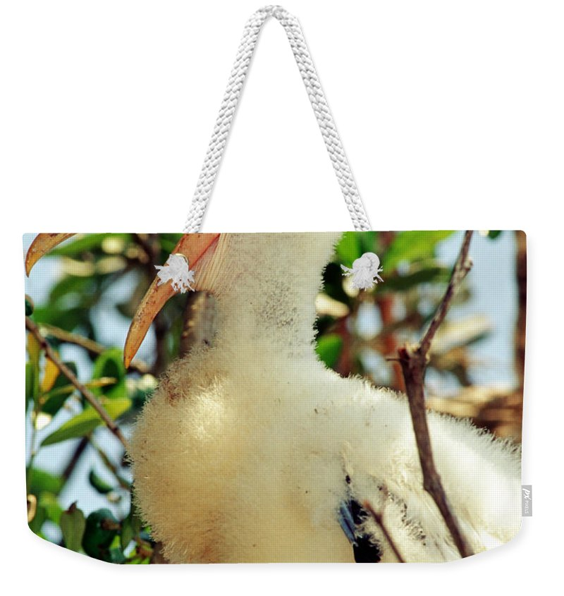 Wood Stork Weekender Tote Bag featuring the photograph Wood Stork by Millard H. Sharp