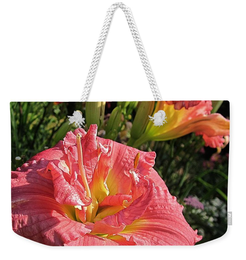 Zona Rosa Daylily Weekender Tote Bag featuring the photograph Zona Rosa Daylily by MTBobbins Photography