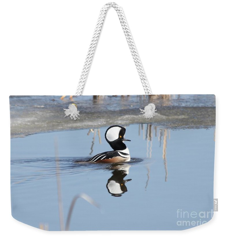 Hodded Weekender Tote Bag featuring the photograph Hooded Merganser by Lori Tordsen