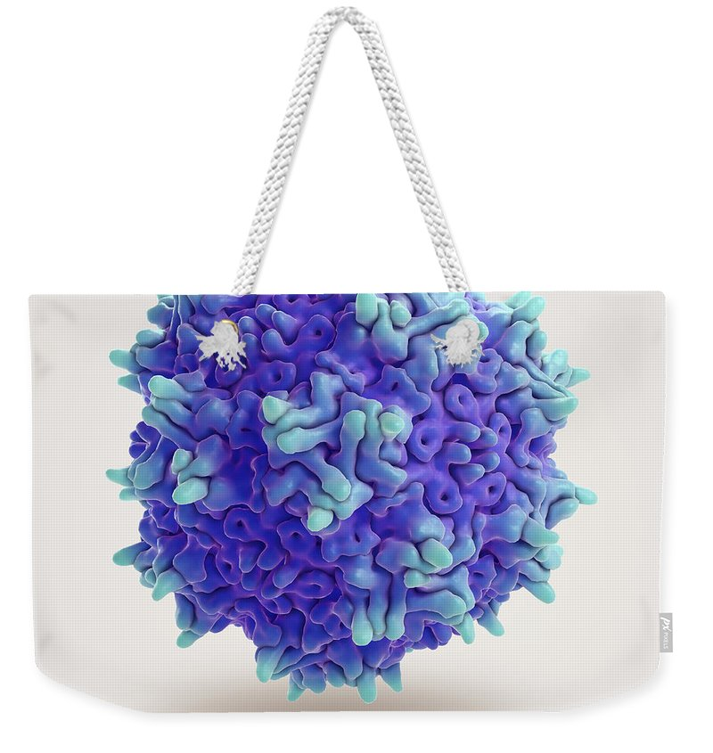 3d Visualisation Weekender Tote Bag featuring the photograph Adeno-associated Virus by Science Picture Co