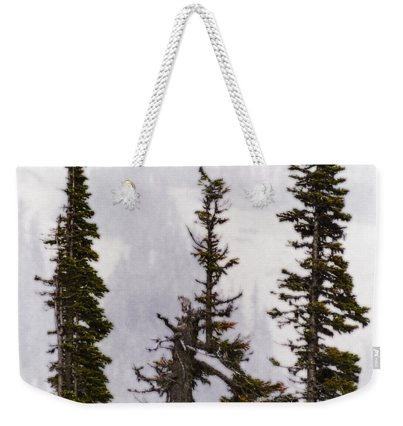 Washington State Weekender Tote Bag featuring the photograph 3 Amigos by Greg Reed
