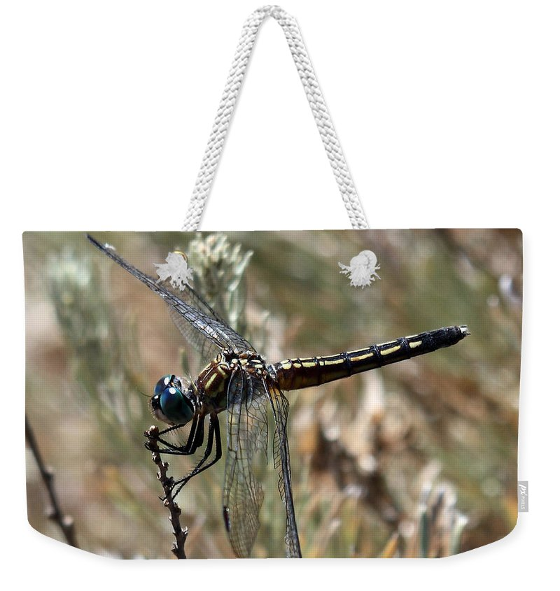 Nature Weekender Tote Bag featuring the photograph Blue Dasher by David Salter