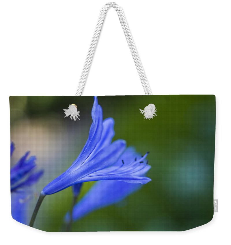 Flower Weekender Tote Bag featuring the photograph Blue Flower by Paulo Goncalves