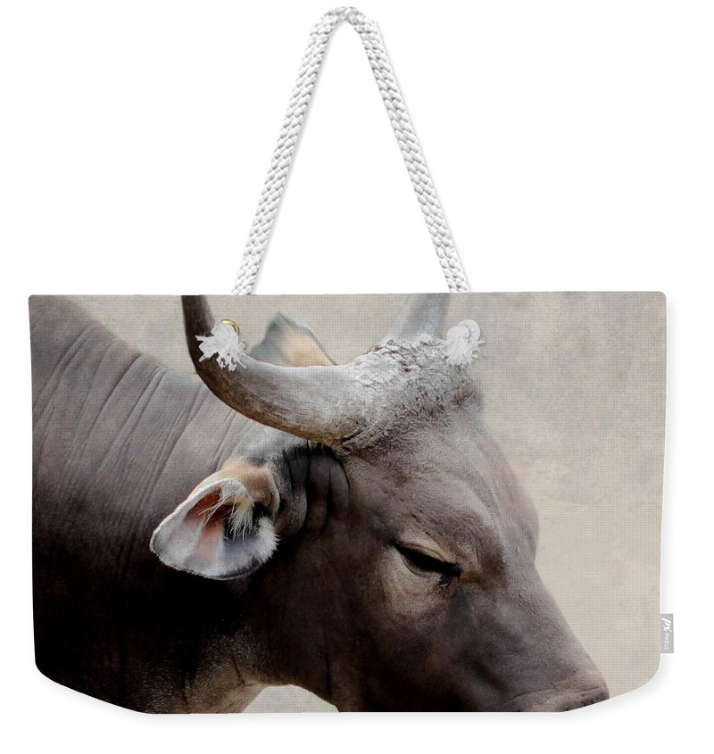 Buffalo Weekender Tote Bag featuring the photograph Buffalo by Heike Hultsch