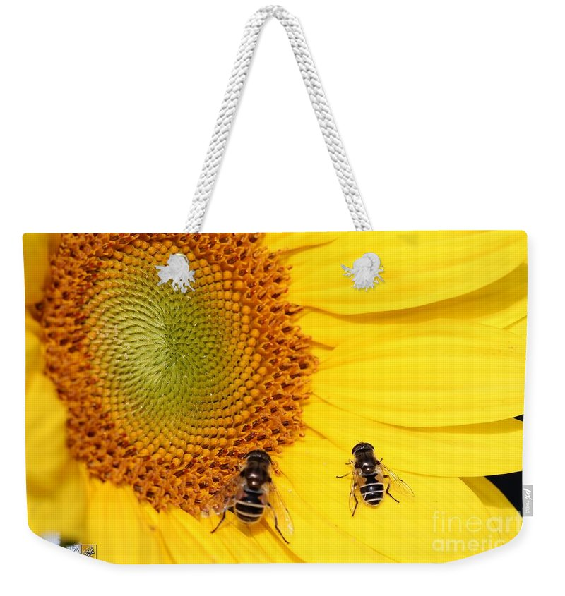 Mccombie Weekender Tote Bag featuring the photograph Chipmunk's Peredovik Sunflower by J McCombie