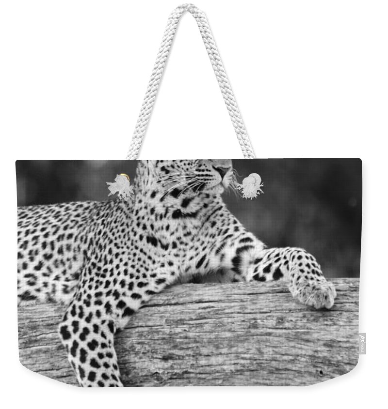 Africa Weekender Tote Bag featuring the photograph Dignity 3 by Michele Burgess