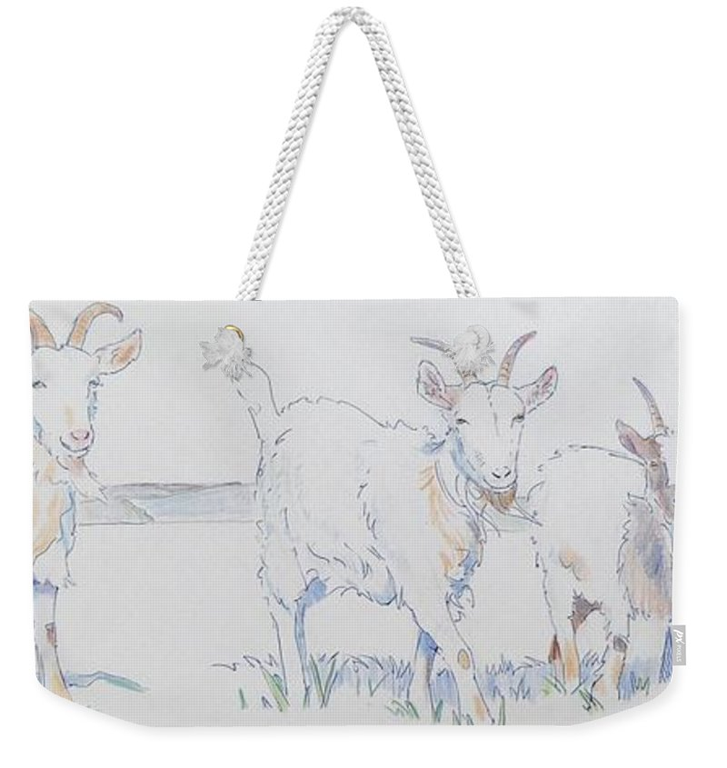 Mike Jory Goats Billy Kid Goatee Field Somerset England United Kingdom Row Funny Charming Horns Butt Ram Ewe Buck Doe Charge Cute Charming Tail Cannington College Weekender Tote Bag featuring the drawing Goat Drawing by Mike Jory