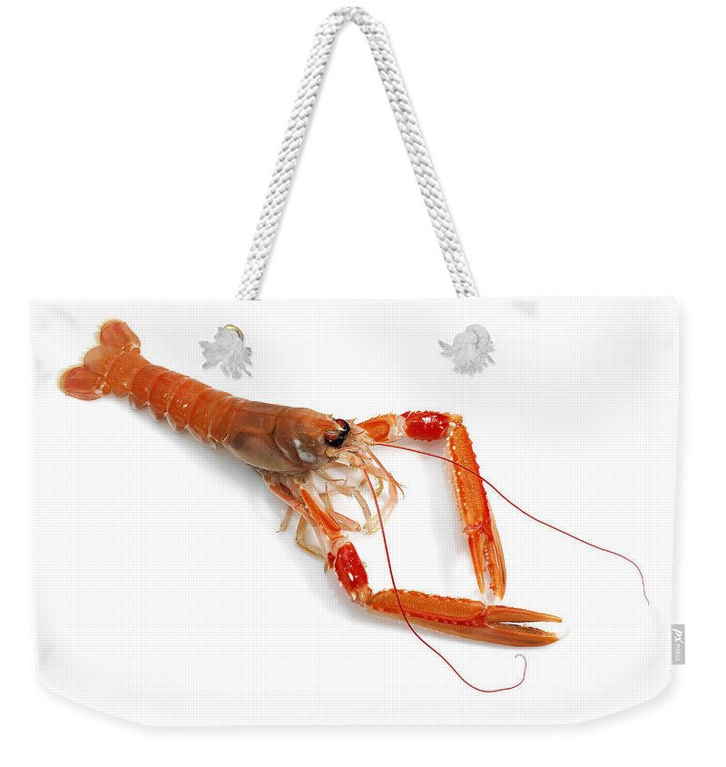 Animal Weekender Tote Bag featuring the photograph Langoustine by Gerard Lacz