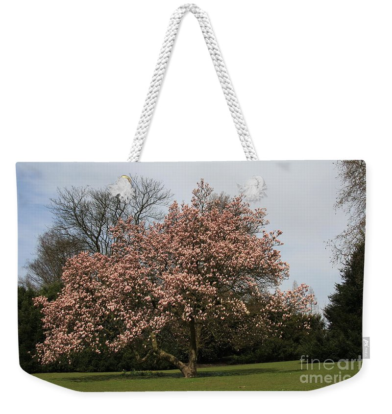 Magnolia Tree Weekender Tote Bag featuring the photograph Magnolia Tree by Christiane Schulze Art And Photography