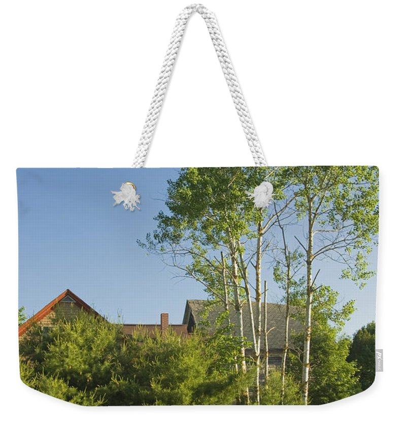 Field Weekender Tote Bag featuring the photograph Maine Wild Lupine Flowers by Keith Webber Jr
