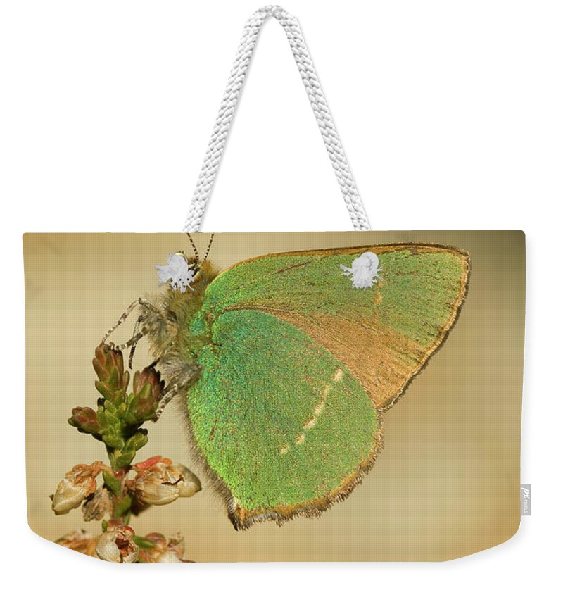 Nature Weekender Tote Bag featuring the photograph Nature And Places Of Spain by Marcos Veiga