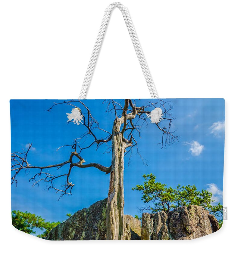 Aerial Weekender Tote Bag featuring the photograph Old And Ancient Dry Tree On Top Of Mountain by Alex Grichenko