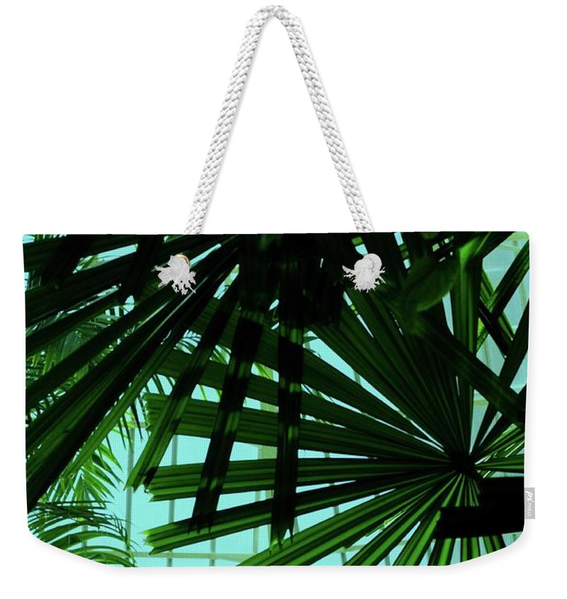 Palm Weekender Tote Bag featuring the photograph Palm Trees by Kathleen Struckle