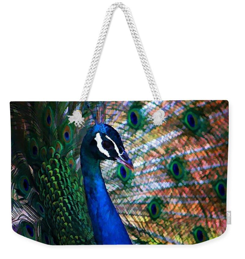 Peacock Weekender Tote Bag featuring the photograph Peacock by Joyce Baldassarre