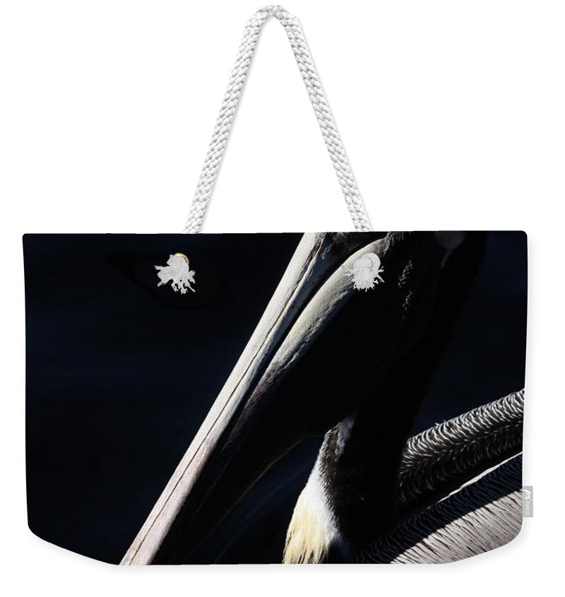 Pelican Weekender Tote Bag featuring the photograph Pelican Profile by Carol Groenen