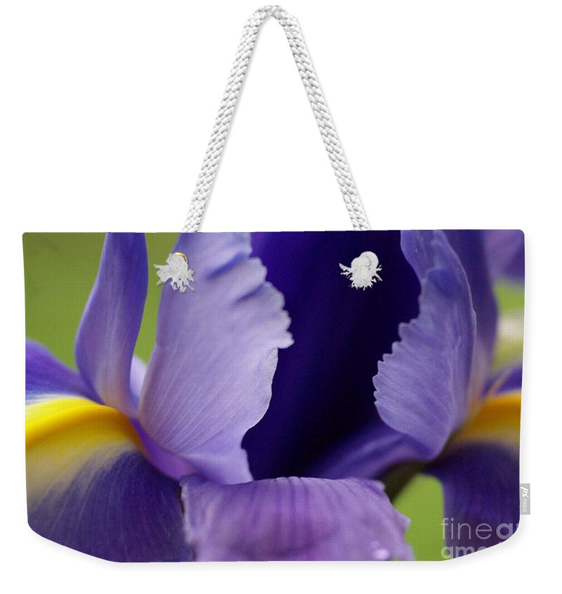 Purple Weekender Tote Bag featuring the photograph Purple by Carol Lynch