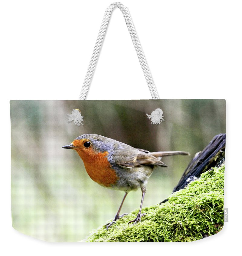 Adult Weekender Tote Bag featuring the photograph Rouge Gorge Erithacus Rubecula by Gerard Lacz