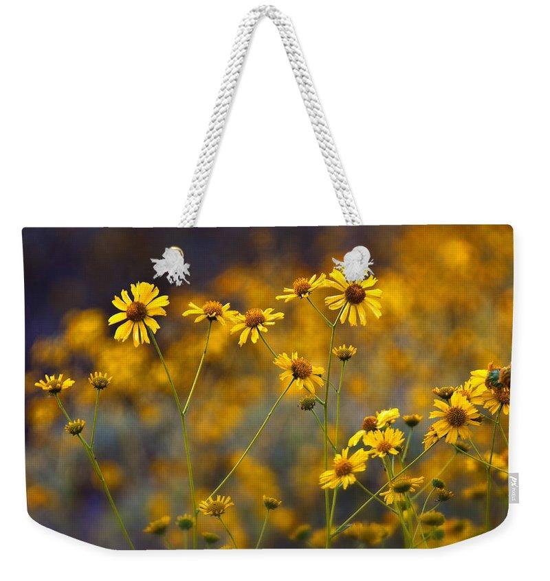 Yellow Brittlebush Weekender Tote Bag featuring the photograph Simplicity by Saija Lehtonen