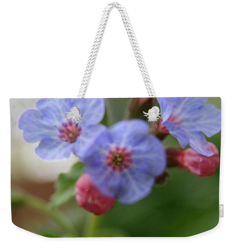Flower Weekender Tote Bag featuring the photograph Soft Light by Neal Eslinger