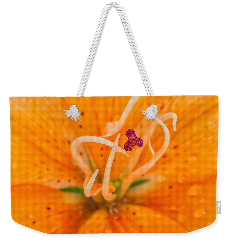 Flower Weekender Tote Bag featuring the photograph Spring by Paulo Goncalves