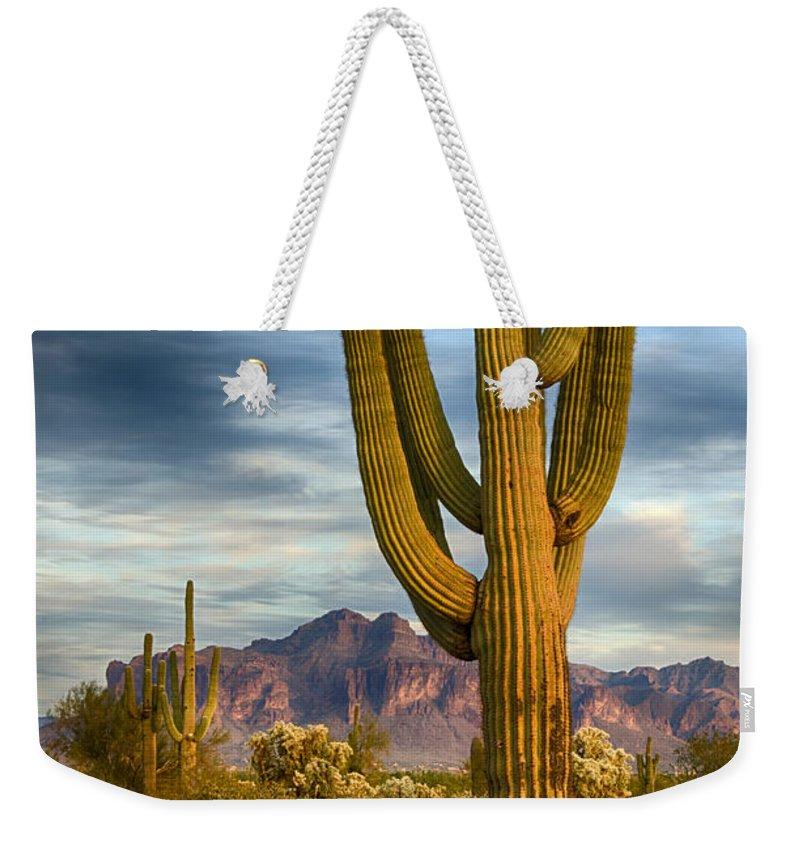 Arizona Weekender Tote Bag featuring the photograph Standing Tall by Saija Lehtonen