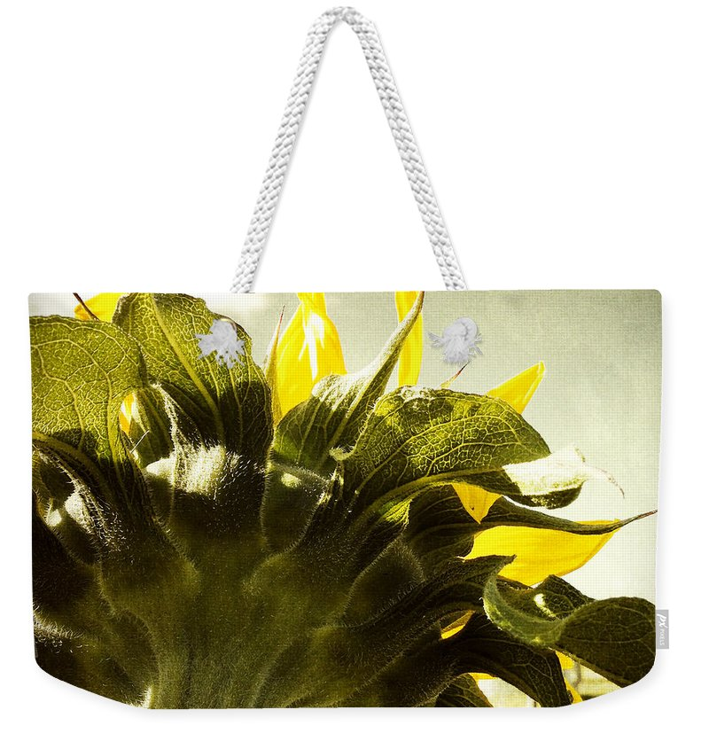 Sky Weekender Tote Bag featuring the photograph Sunflower by Les Cunliffe
