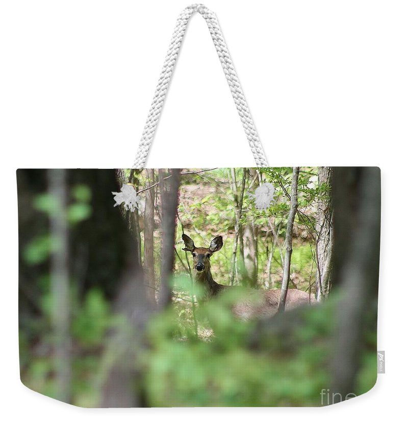 Deer Weekender Tote Bag featuring the photograph Through The Trees by Neal Eslinger