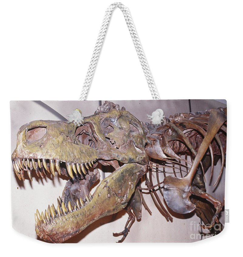 Animal Weekender Tote Bag featuring the photograph Tyrannosaurus Rex by Millard H. Sharp