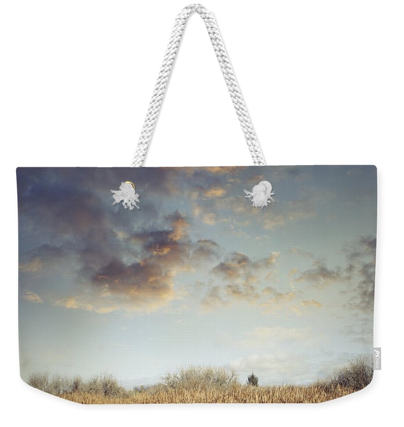 Sky Weekender Tote Bag featuring the photograph Wetland Walk by Les Cunliffe