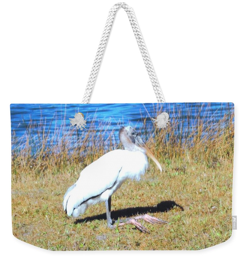 Resting On His Knees At Lakes Park In Ft.myers Weekender Tote Bag featuring the photograph Woodstork by Robert Floyd