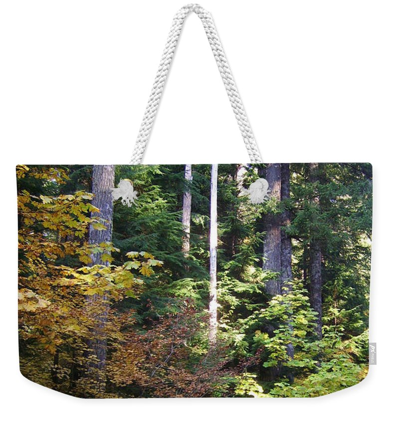Bloom Weekender Tote Bag featuring the photograph Autumn 8 by J D Owen