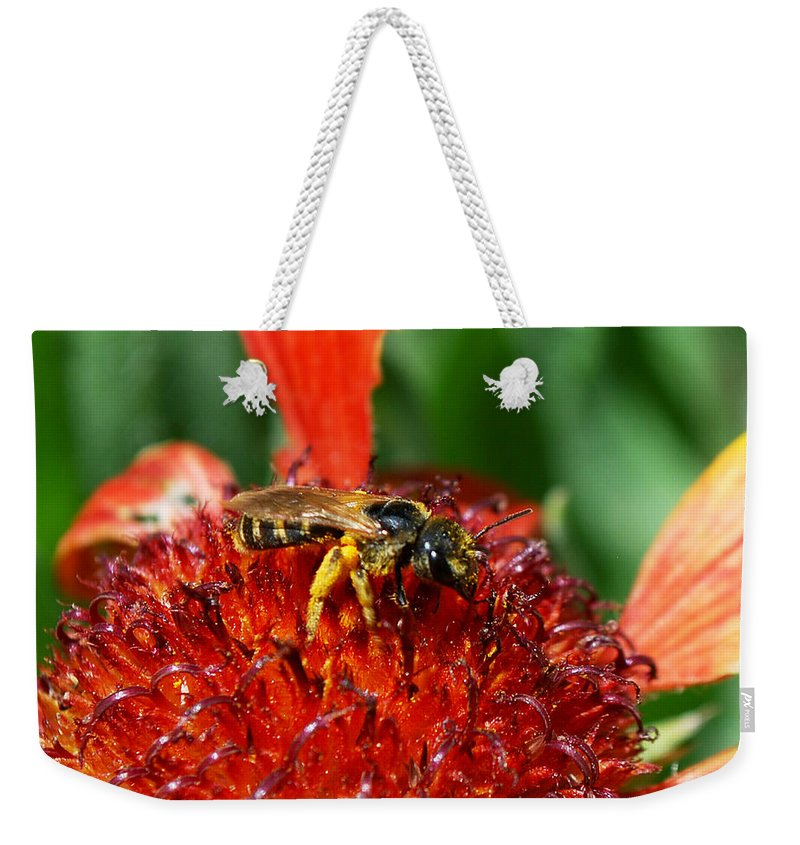 Becky Furgason Weekender Tote Bag featuring the photograph #notimeforsorrow by Becky Furgason
