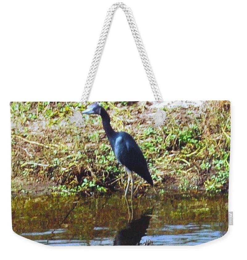 Matlacha Weekender Tote Bag featuring the photograph Blue Heron by Robert Floyd