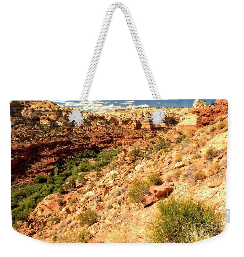 Calf Creek Falls Weekender Tote Bag featuring the photograph Calf Creek Falls Canyon by Adam Jewell