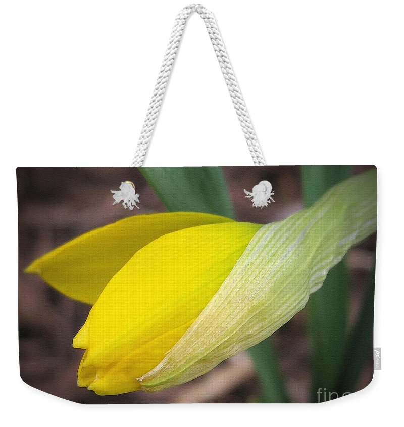 Mccombie Weekender Tote Bag featuring the painting Dwarf Cyclamineus Daffodil Named Jet Fire by J McCombie