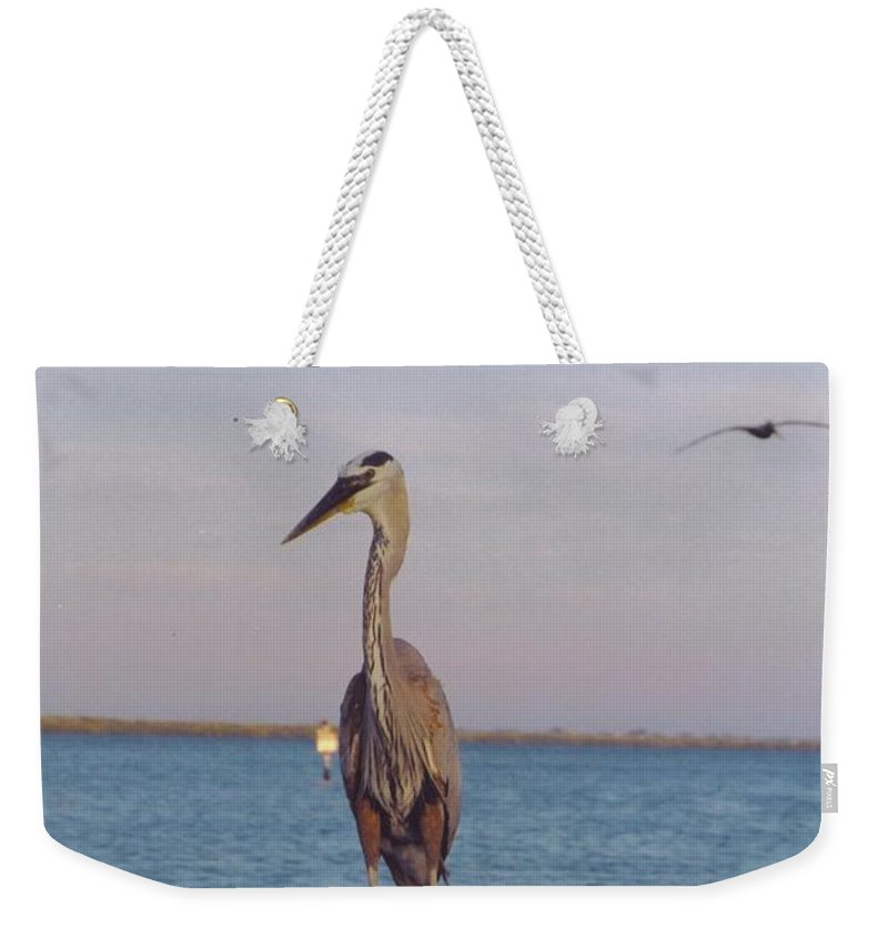 Matlacha Boat Dock Weekender Tote Bag featuring the photograph Great Blue Heron by Robert Floyd