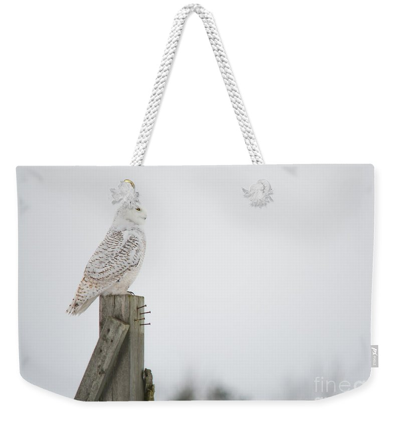 Field Weekender Tote Bag featuring the photograph Over There by Cheryl Baxter