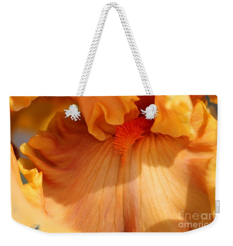 Mccombie Weekender Tote Bag featuring the photograph Tall Bearded Iris Named Penny Lane by J McCombie