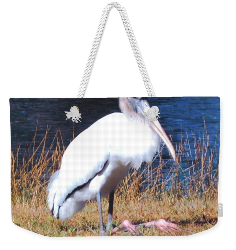 Resting Its Feet At Lakes Park In Ft.myers Weekender Tote Bag featuring the photograph Woodstork by Robert Floyd