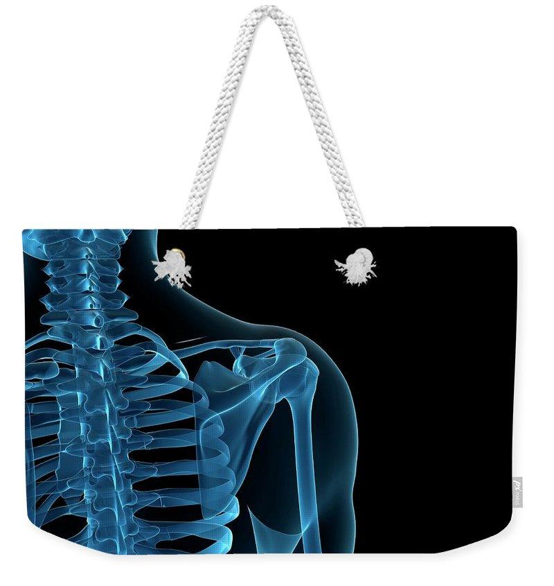 Anatomy Weekender Tote Bag featuring the digital art Upper Body Bones, Artwork by Sciepro