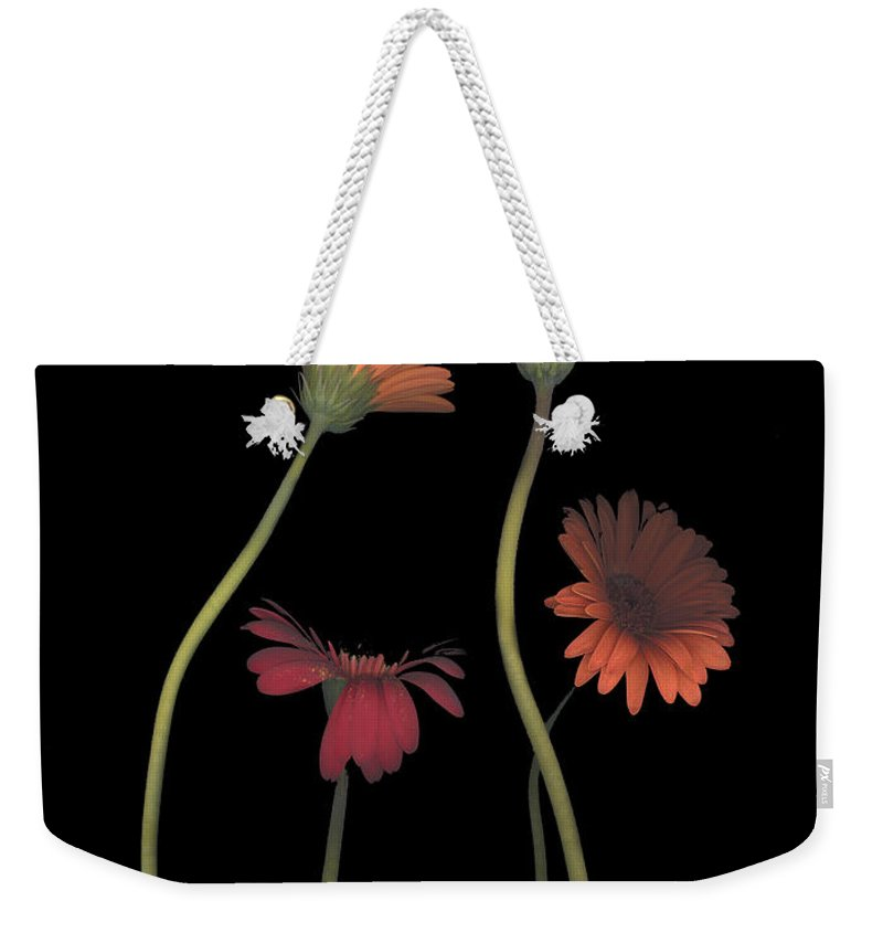 Black Weekender Tote Bag featuring the photograph 4daisies On Stems by Heather Kirk